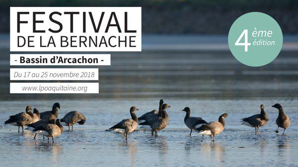 Festival De La Bernache 4eme Edition Arcachon 33120 Pour