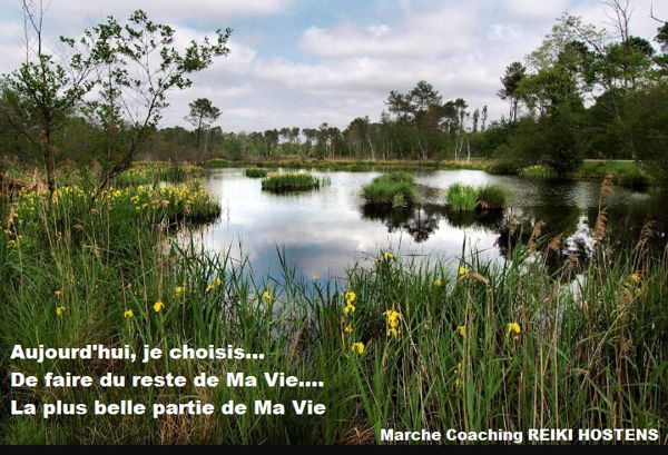 Marche coaching