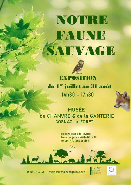 NOTRE FAUNE SAUVAGE