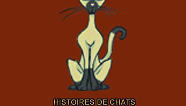 Chat fatayat france