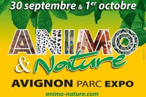 Animo & Nature