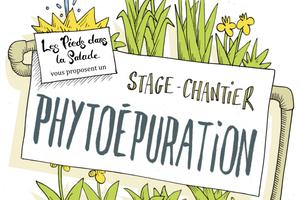 Stage Phyto-épuration
