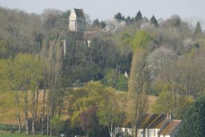 La Balade du curieux : Plantes de la vallée de la Troesne