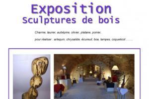 Exposition de Thierry Lozano Caves de la Tour de Vesvre