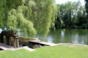 Visite guidée « Les jardins disparus de Chantilly… Au fil de l'art »