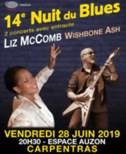 14E NUIT DU BLUES CARPENTRAS