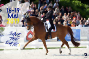 CDIO 5* - FEI Nations Cup