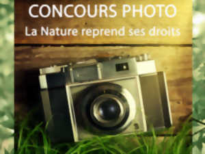 Concours photo 2019