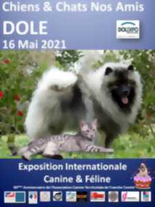 EXPOSITION - CHIENS ET CHATS NOS AMIS