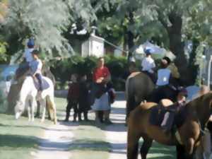 STAGE D'EQUITATION CHEVAL ET PONEY