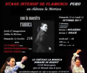 STAGE FLAMENCO INTENSIF