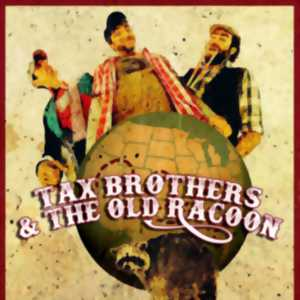 tax brothers and the old raccoon