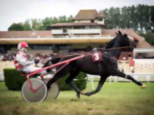 Courses hippiques Deauville-Clairefontaine - Trot