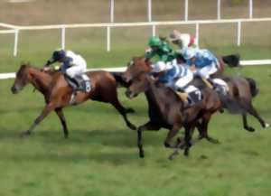 Gironde - Sports et loisirs Sports équestres - Meetings - Hippodrome ...